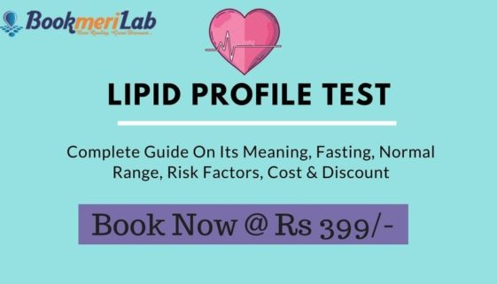 Lipid Profile Test Guide with Cost